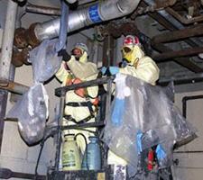 AsbestosAbate42